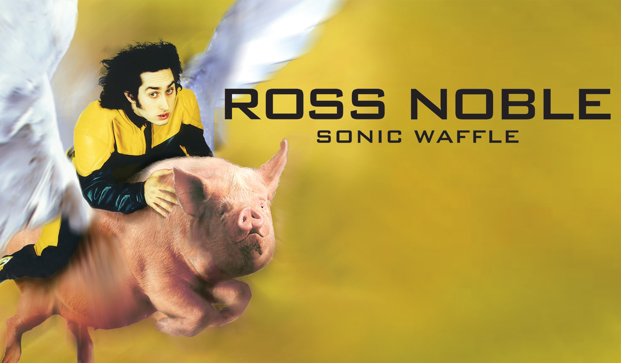 Ross Noble - Sonic Waffle DVD - show logo